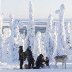 Ailo – Un'avventura tra i ghiacci