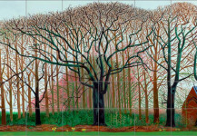 David Hockney Royal Academy Of Art